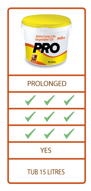 Delico Pro deep frying oil range