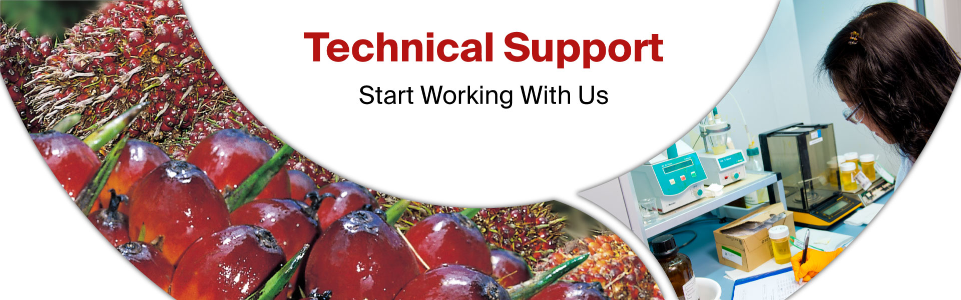 New Britain Technical Support