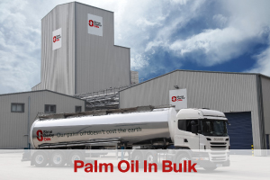 palm oil in bulk